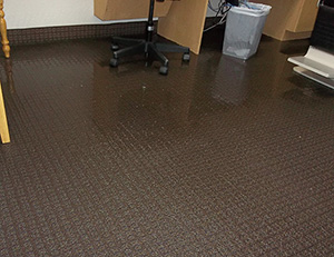 Carpet Water Damage Restoration Services in Texas and Oklahoma